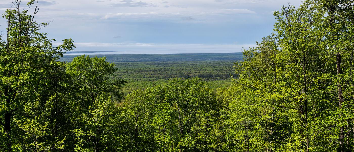 View from Mt Arvon