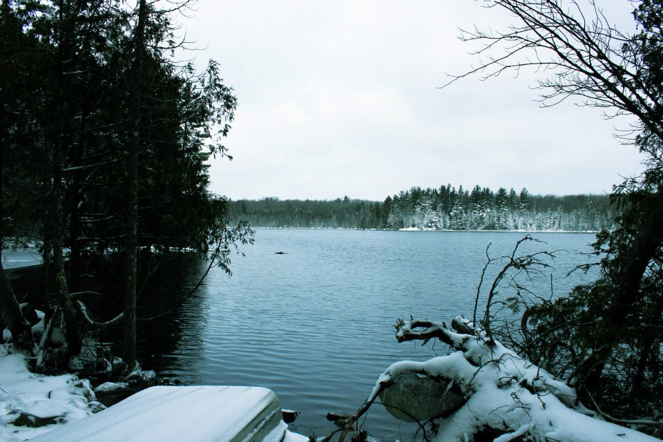 Teddy Lake