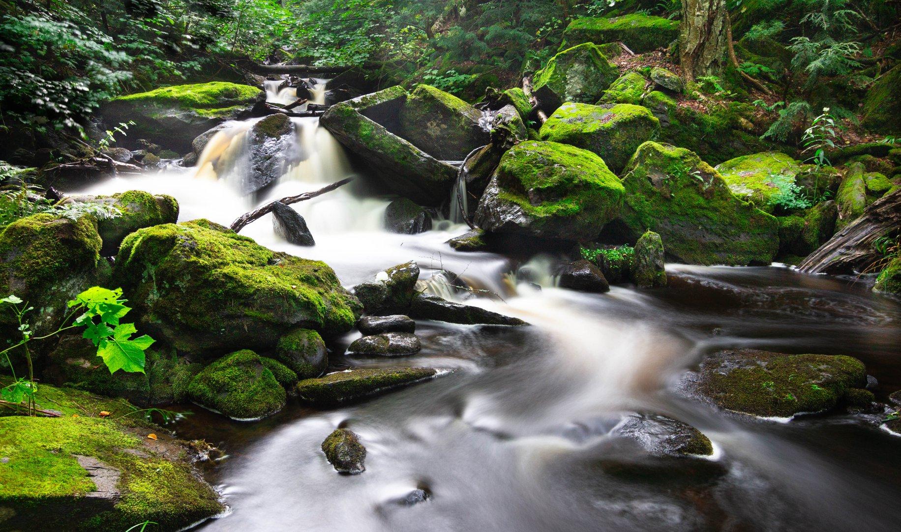 Rapids of Bulldog Falls